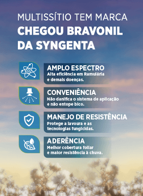 Bravonil - Algodão