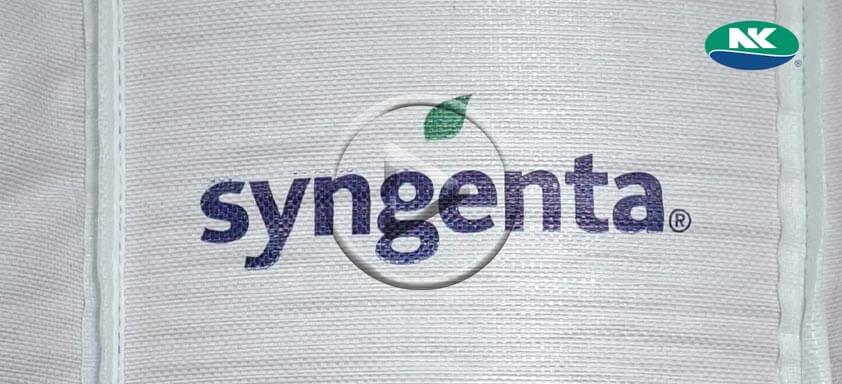 Syngenta inova com Projeto Big Bag sementes de milho NK