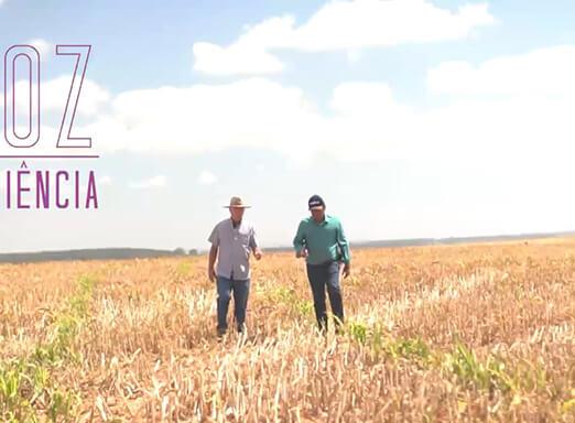 Websérie A Voz da Experiência   Ep. 10 – Guimarânia - MG