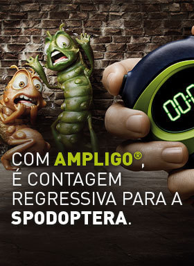 Banner do  inseticida Ampligo