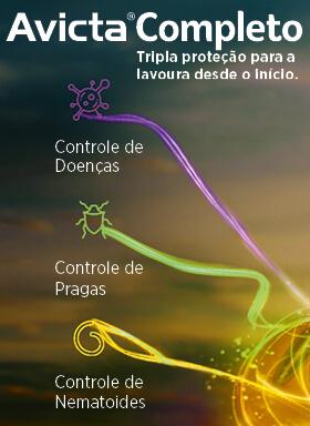 Banner do tratamento de sementes industrial Avicta Completo