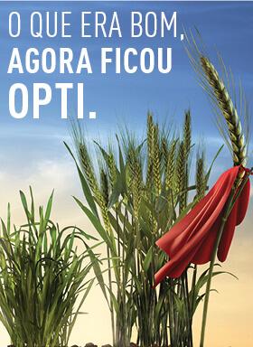 Banner do inseticida para tratamento de sementes Cruiser Opti
