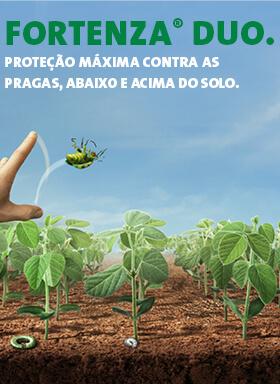 Banner do tratamento de sementes industrial Fortenza Duo