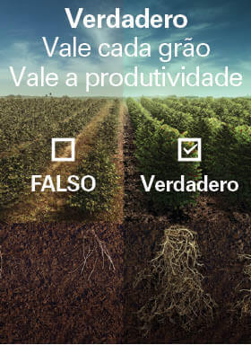 Banner do inseticida e fungicida Verdadero