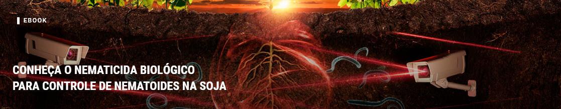 Conheça o nematicida biológico para controle de nematoides na soja