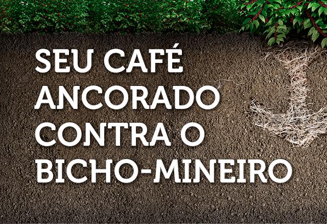 Durivo: controle de bicho-mineiro na cultura de café