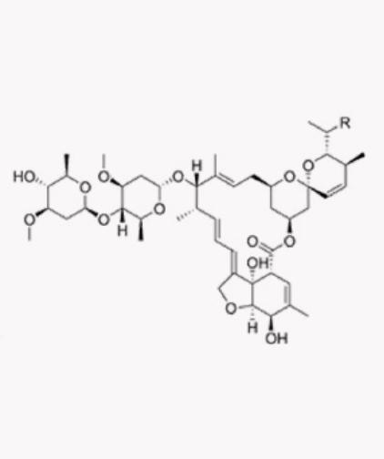 Molécula: Abamectin 18g ai /L; Grupo químico: AVERMECTINAS