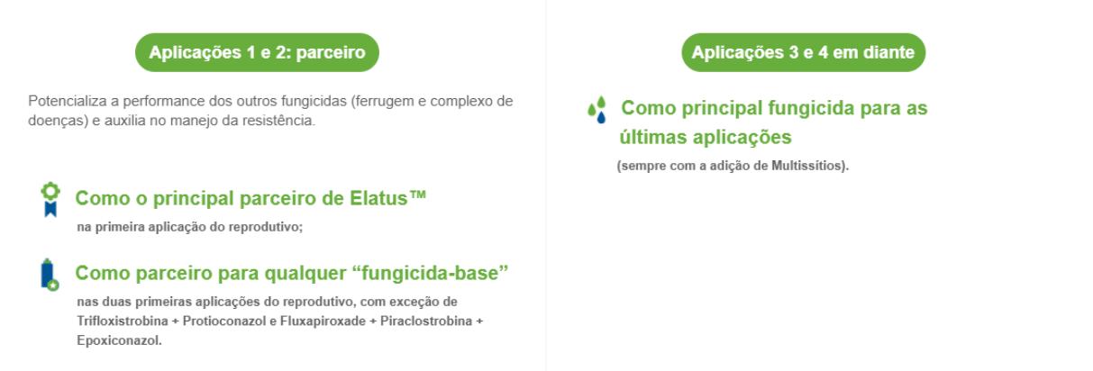 Cypress: parceiro e principal fungicida