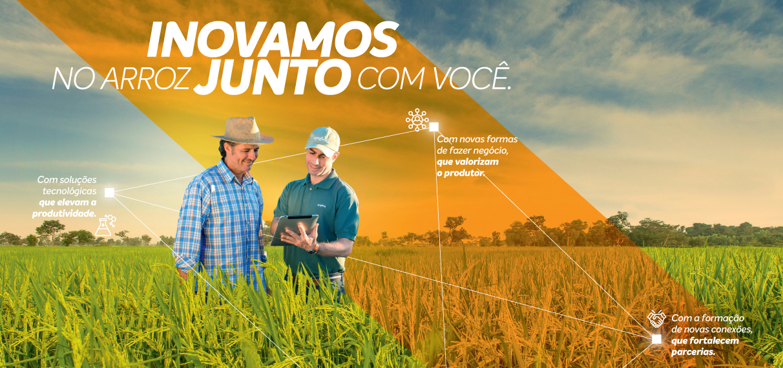 Syngenta e você conectados à produtividade do arroz