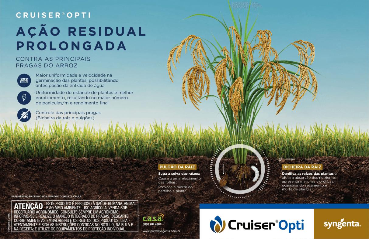 Ação residual prolongada contra pragas do arroz