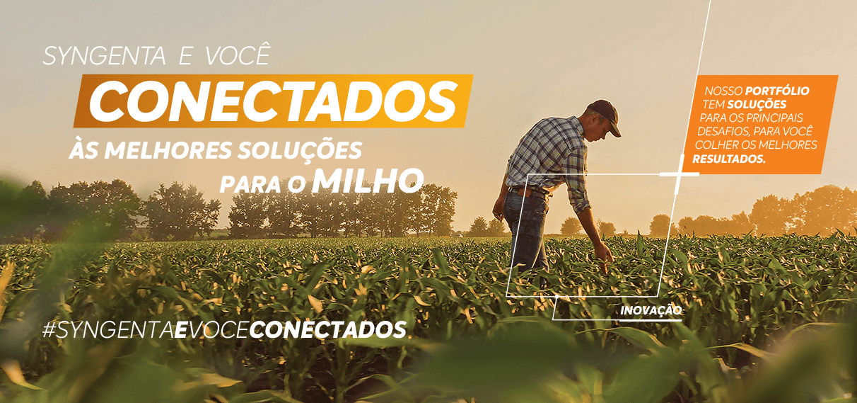 Syngenta e você conectados às melhores soluções para o milho.