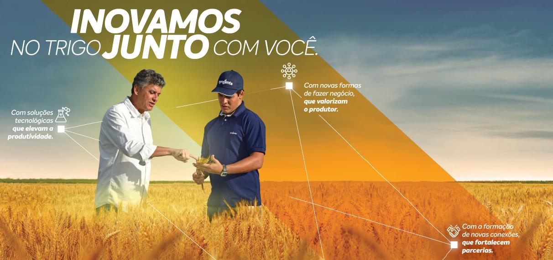 Syngenta e você conectados à produtividade do seu trigo do plantio à colheita.