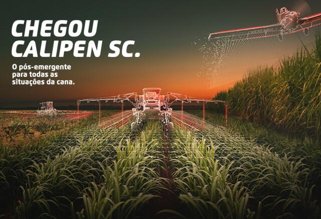 Herbicida pós-emergente Calipen SC para cana-de-açúcar