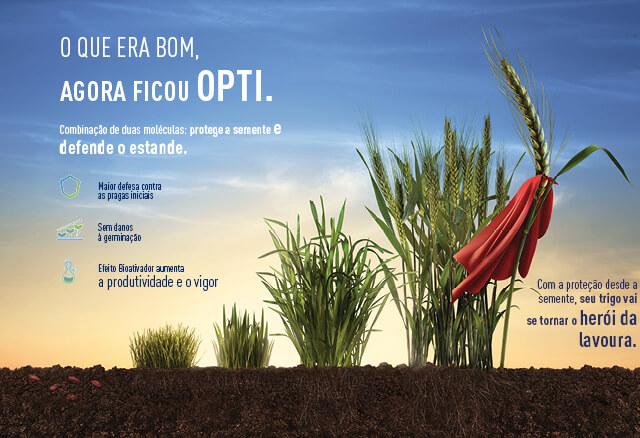Inseticida Cruiser Opti protege a cultura de trigo desde a semente