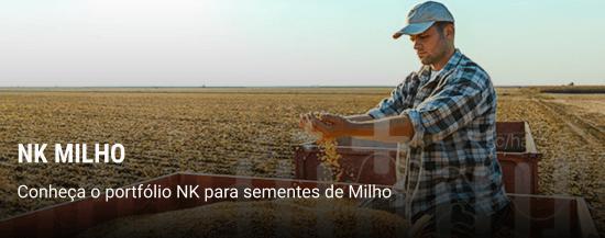 Conheça o portfólio NK para sementes de milho