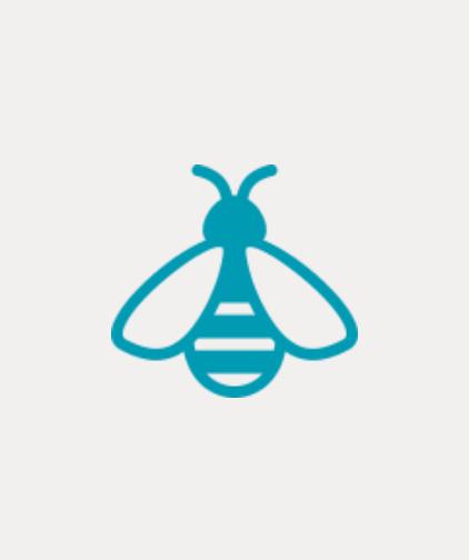 Curso sobre criação de abelhas sem ferrão