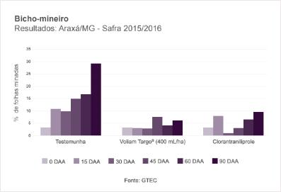Bicho-mineiro Resultados Araxá/MG