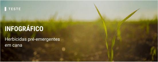 Infográfico. Herbicidas pré-emergentes em cana