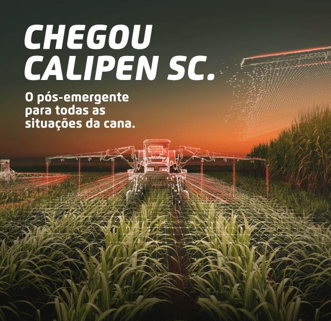 Calipen Sc: Herbicida para folhas largas e estreitas
