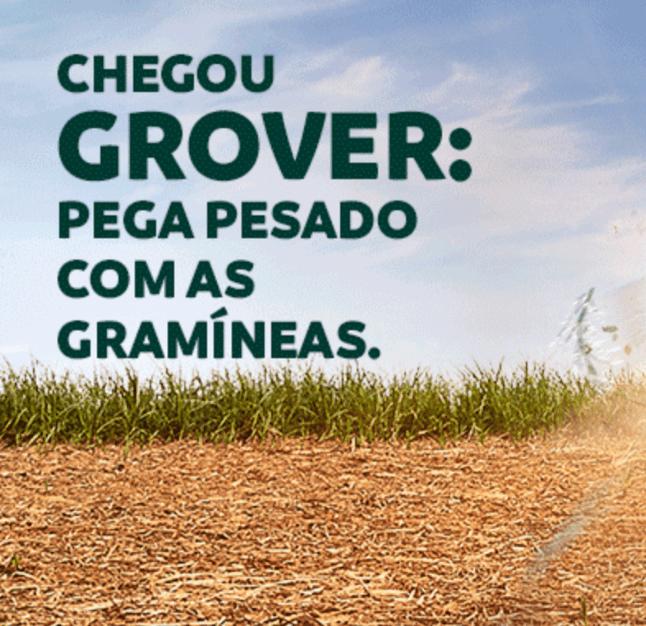 Chegou Grover: pega pesado com as gramíneas.