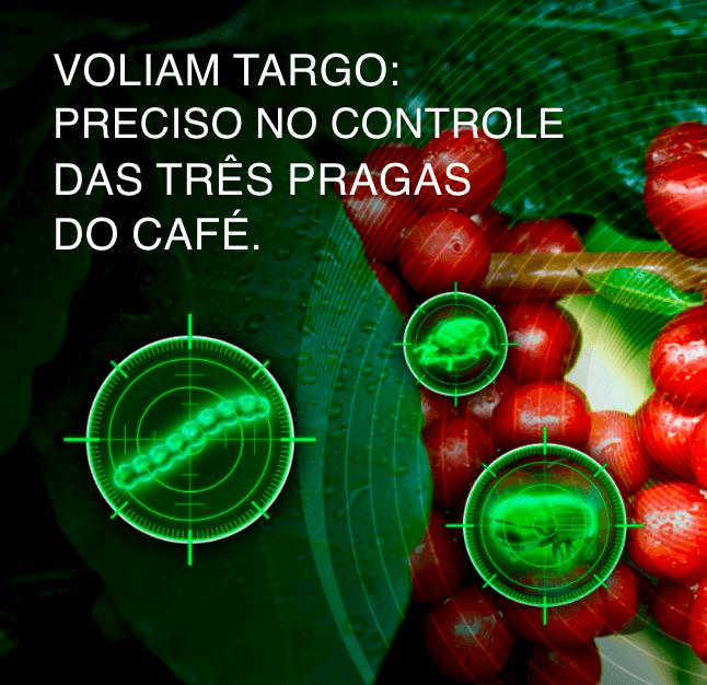 Voliam Targo: preciso no controle das três pragas do café.